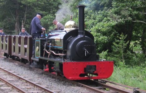 Narrow Gauge Locomotive Experience Days