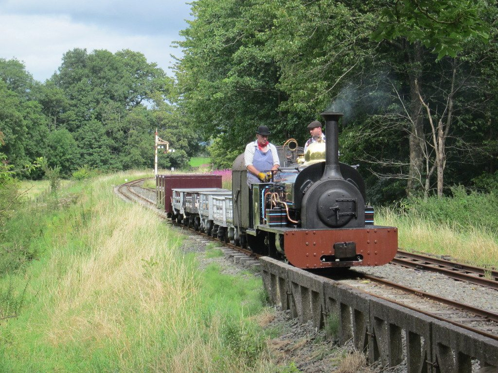 Winfred waits in the Llangower loop with a freight train