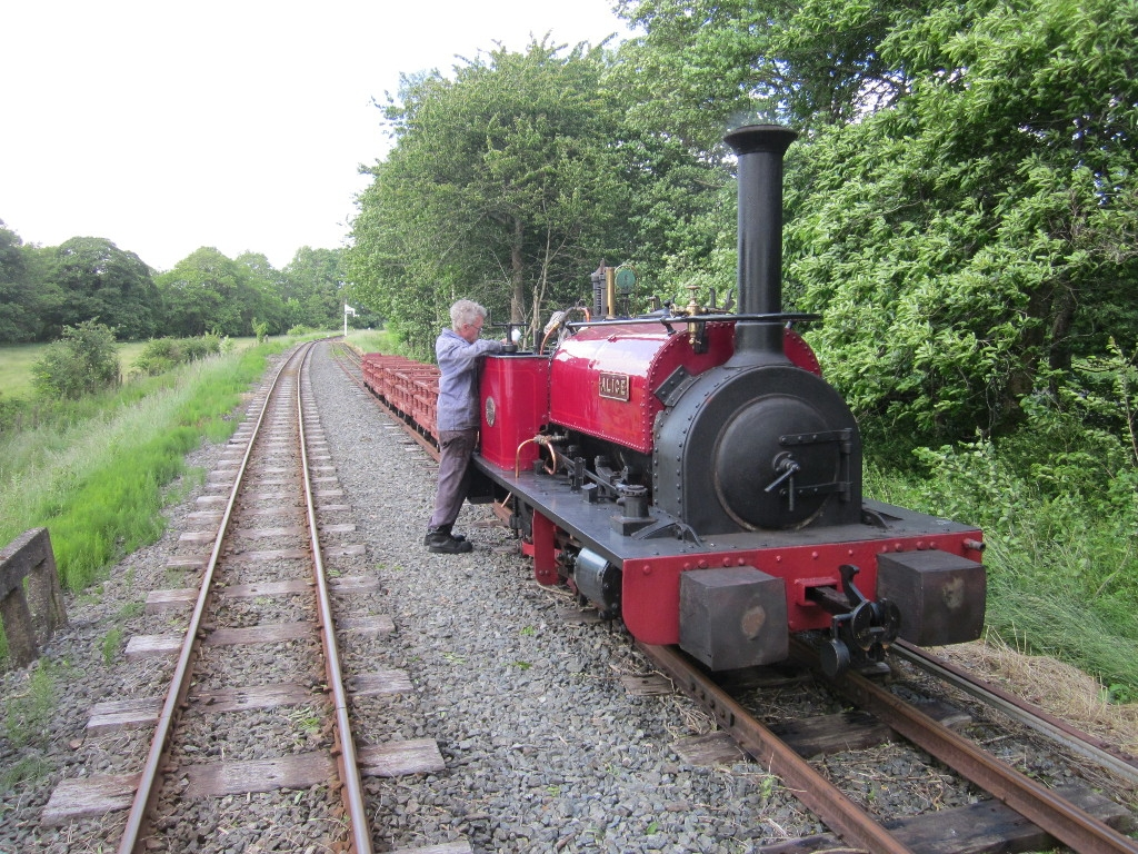 Alice with the Dinorwig slate wagons at Llangower